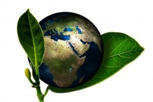 Remica medio ambiente